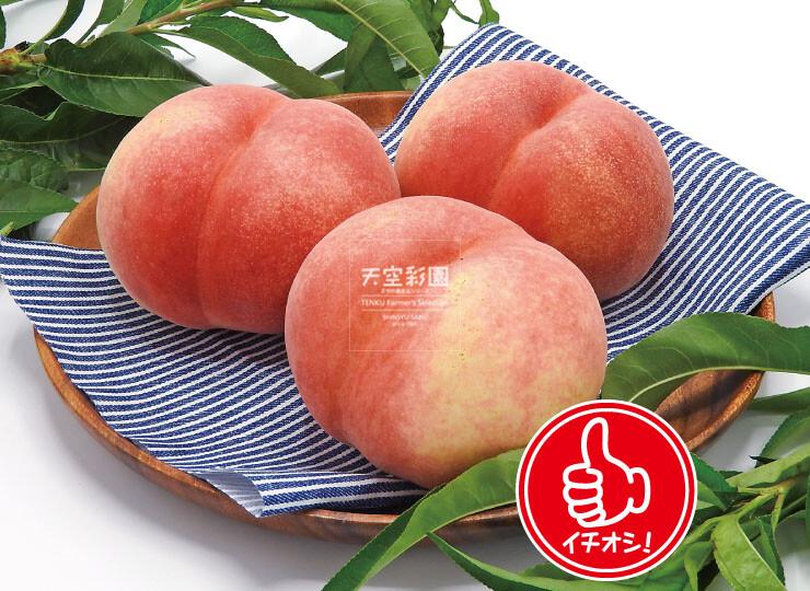 01SEIMOMA3-01